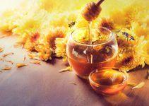 sonhar com mel