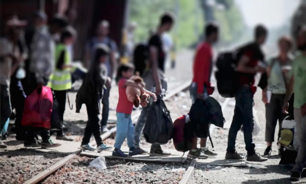 significado de migração