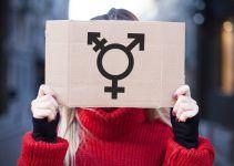 significado de transgênero