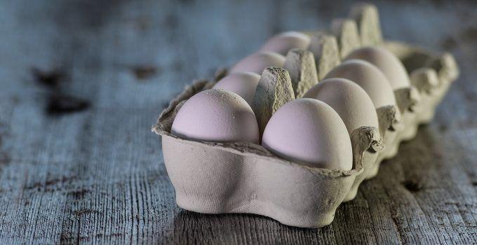 O que significa sonhar com ovo?