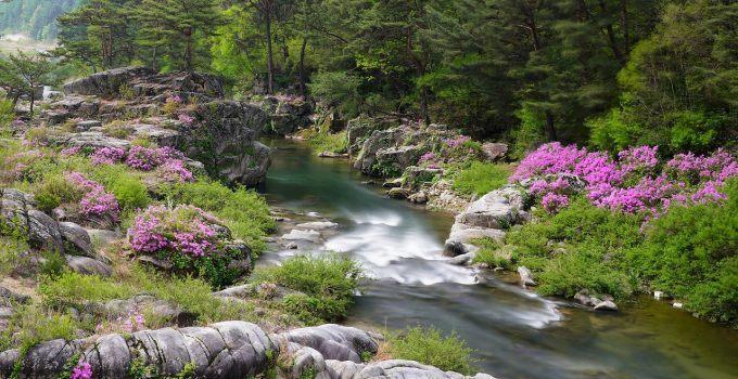 O que significa sonhar com água corrente?