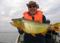 O que significa sonhar com peixe grande?